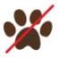 no_dogs.jpg